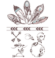 Collection of feathers vector image vector image