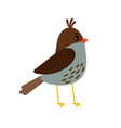 cute little bird icon vector image vector image