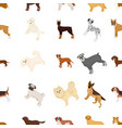 dog pooch breed and other web icon in cartoon vector image vector image