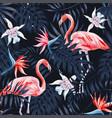 flamingo strelitzia palm leaves dark background vector image