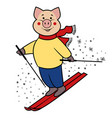 hockey pig symbol 2019 vector image vector image