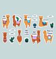 lama stickers cute cartoon alpaca emblems for vector image