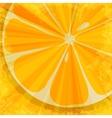 Orange fruit background vector image vector image