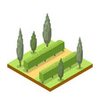 park alley with trees isometric 3d icon vector image