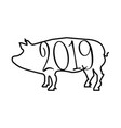 2019 year of pig vector image