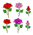 decorative polygonal abstract roses set vector image