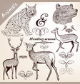hand drawn forest animals set for design vector image vector image