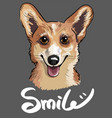 stylish print of welsh corgi dog in sketch style vector image