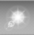 sunlight special lens flare light effect vector image