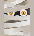 mummy face vector image