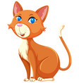 a cute cat on white background vector image