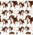 beagle dog seamless pattern vector image vector image