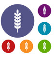 big grain spike icons set vector image vector image