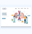 kidney stones website landing page design vector image