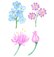 Set of watercolor floral elements vector image
