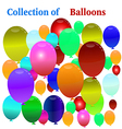 Balloon Celebration Group Event Festival Colour Fu vector image vector image