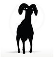 big horn sheep silhouette in walking pose vector image vector image