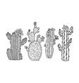 cactus plant set sketch engraving vector image vector image