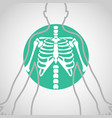chest x-ray logo icon design vector image vector image
