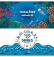 Sea Underwater Life Horizontal Banners vector image