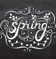 Spring Lettering calligraphy vector image vector image