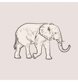 Big elephant in profile walking vector image