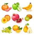 cartoon healthy fruits set vector image vector image