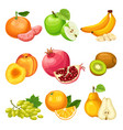 cartoon healthy fruits set vector image