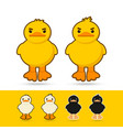 couple duck vector image vector image
