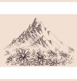 mountain range and edelweiss flowers vector image