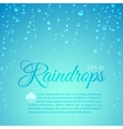 Raindrops vector image vector image