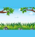 scene with grass in garden vector image vector image
