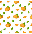 tropical fruits oranges seamless pattern vector image