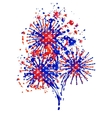 firework Independence Day vector image