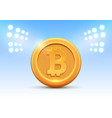 golden coin bitcoin sign money and finance symbol vector image vector image