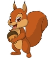 Little funny squirrel vector image