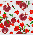 pomegranate fruits seamless pattern with flower vector image vector image