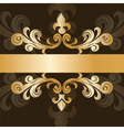 Royal classic ornament invitation vector image vector image