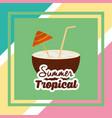 Summer tropical season