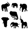 ElephantSet vector image