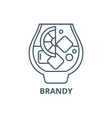 brandy line icon brandy outline sign vector image vector image