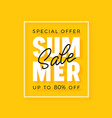 bright modern summer sale banner for advertising vector image
