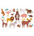 cute animals wood farm and jungle animals fox vector image vector image