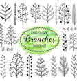 doodle branches vector image