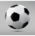 Football Black and White Ball vector image vector image