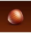 Full Unpeeled Hazelnut on Brown Background