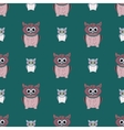 Green and pink owls set vector image