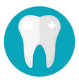 healthy white teeth icon flat style dentistry vector image vector image