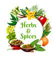 herbs and spices round frame cartoon banner vector image vector image