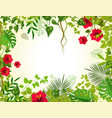 summer tropical background with jungle plants vector image
